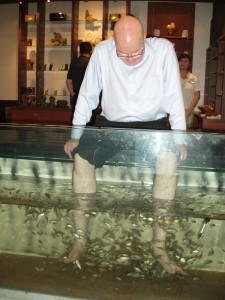 Getting my feet cleaned by the fishes