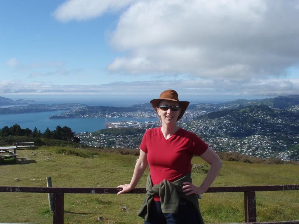 View of Wellington from Mt Kau Kau
