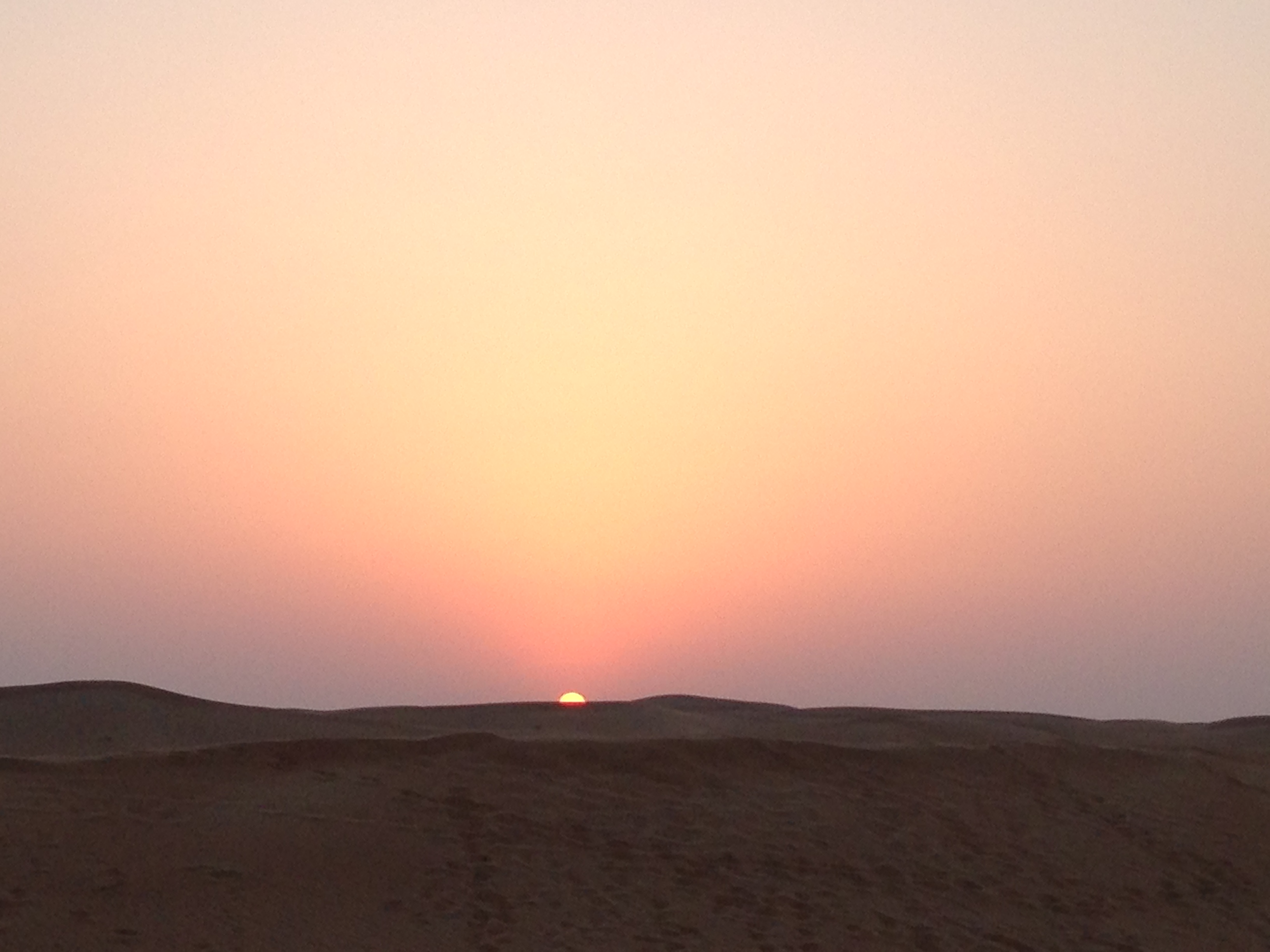 The final days… Delhi and Dubai