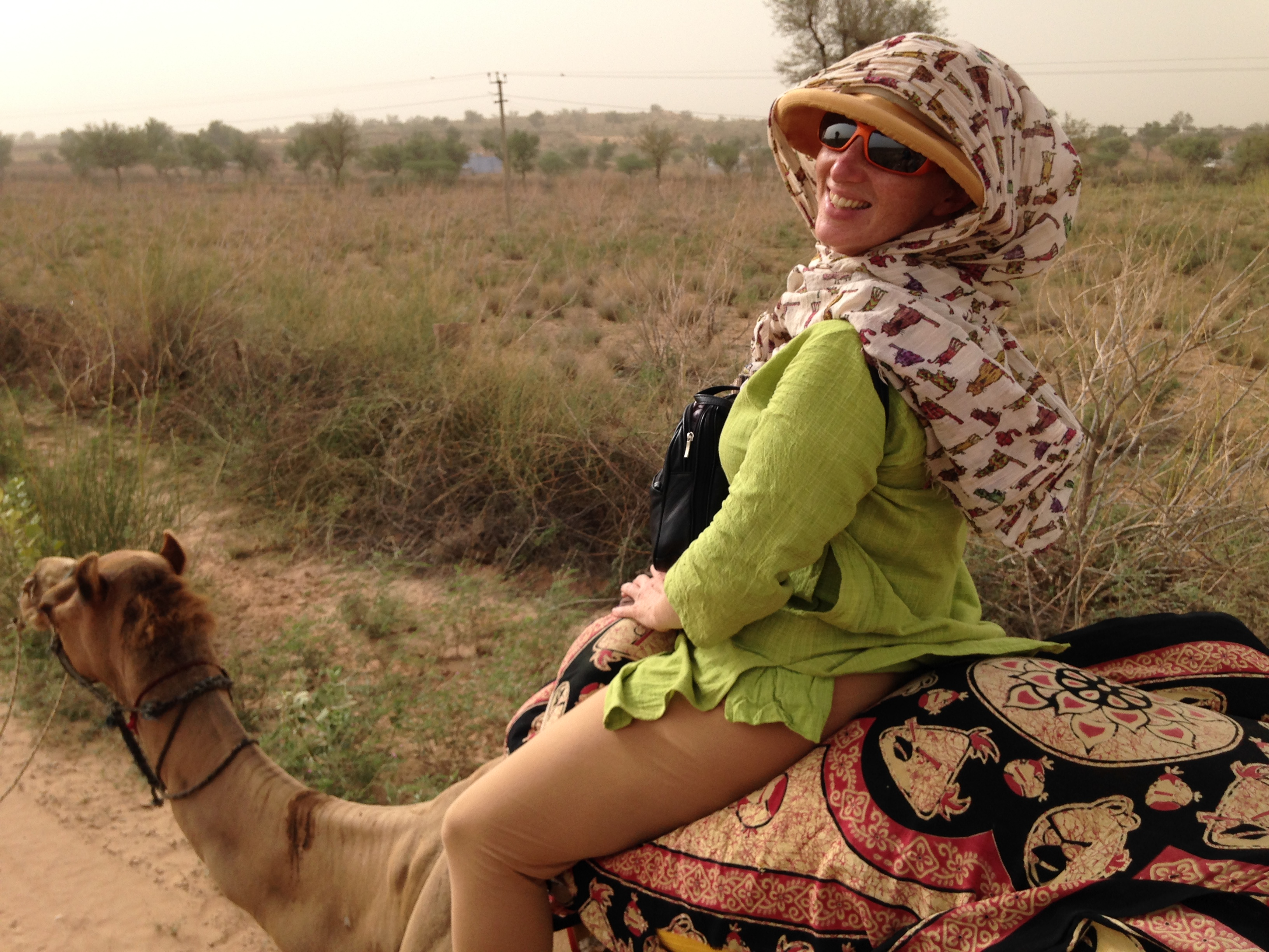 Tiger Hunting, The Blue City and my 1st Camel Ride – Jodhpur, India
