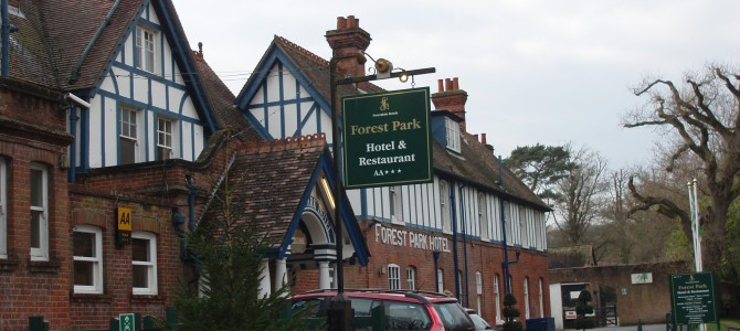 A visit to the Old New Forest